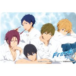 Free!-Eternal Summer- パスケース デザイン01 【2015年4月出荷予定分】
