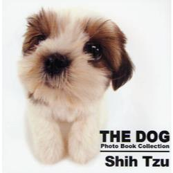 THE DOG Photo Book Collection Shih Tzu [THE DOG Photo Book C]
