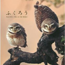 ふくろう BEAUTIFUL OWLS IN THE WORLD
